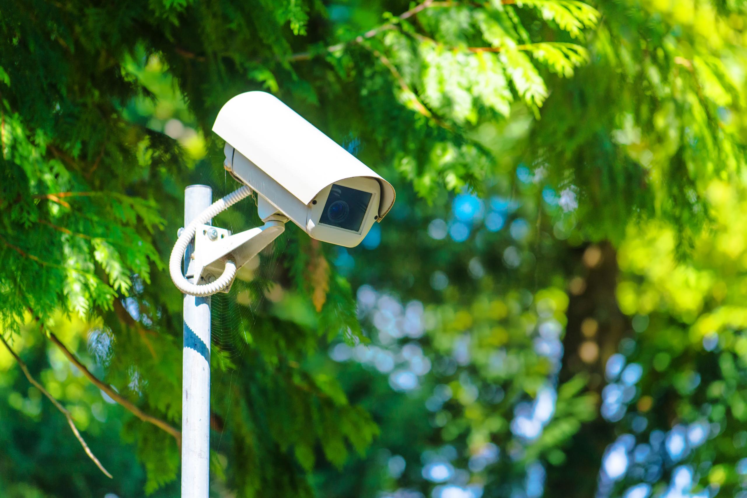 Cámara de video vigilancia
